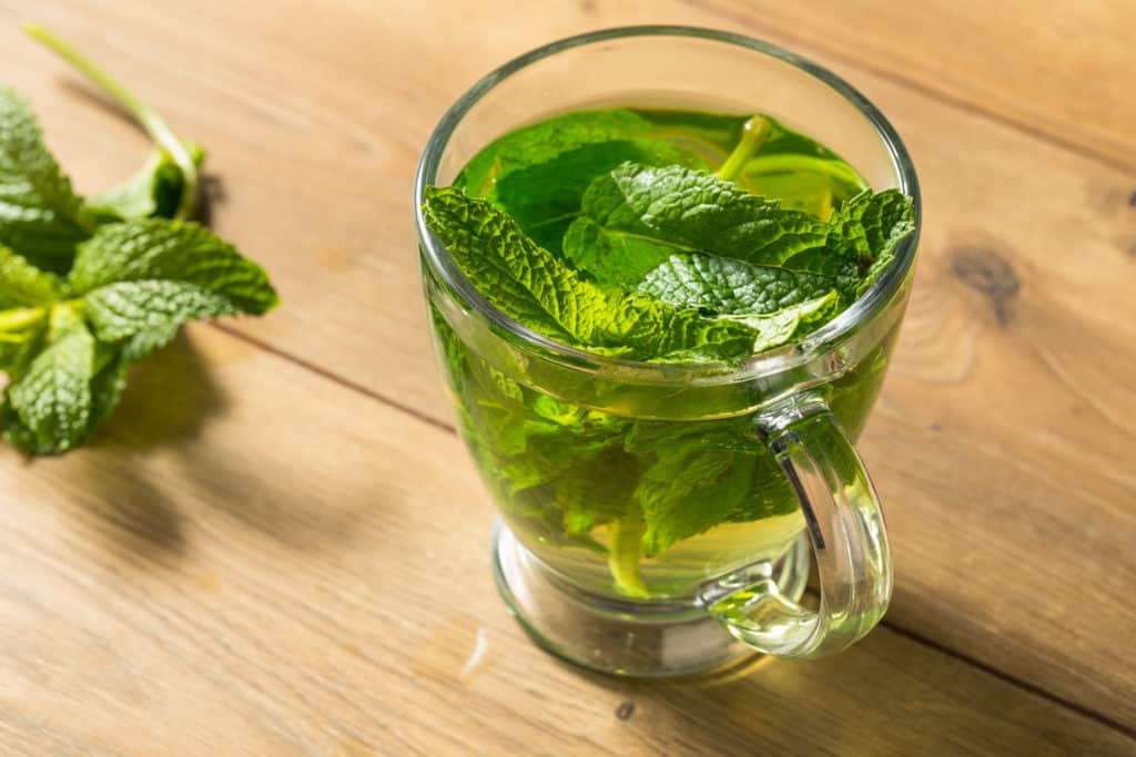 12 Science-Backed Peppermint Tea Benefits